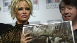 Pamela Anderson à l'Assemblée : les producteurs de foie gras