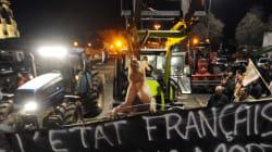 Les éleveurs qui bloquent l'axe Rennes-Brest délogés dans le
