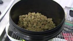 Marijuana récréative: les producteurs médicaux veulent la