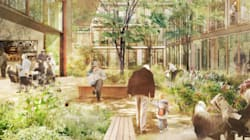 This Radical Elderly Housing Could Be Key To Ending Loneliness In Old