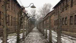 L'orrore del lager nazista raccontato da chi ha attraversato la Selva dei