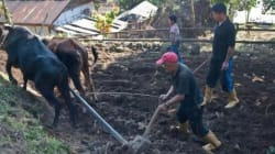 Sikkim Organic Mission: Why We Need To Dig