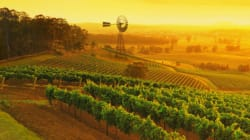 A Guide To Australia's Wine Regions To Inspire Your Next Weekend