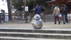 どこかで見たロボット、厳島神社をコロコロ。謎の動画の正体は?