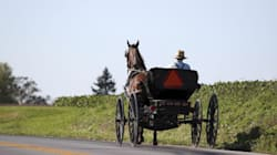 Amish Give Up Pricey Ontario, Head To P.E.I.