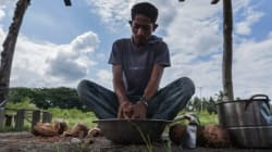 These Resilient Farmers Are Rethinking How Timor-Leste Eats