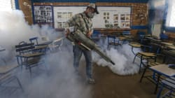 Zika: les insecticides, pas une solution à long