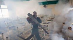 Zika piomba sulle Olimpiadi di Rio. Gli Stati Uniti: