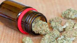 Anche la Lombardia verso la facilitazione dell'accesso alla cannabis