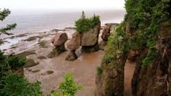 Bay Of Fundy Doesn't Make Wonders