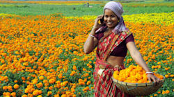 Gujarat Village Diktat: No Mobile For Unmarried