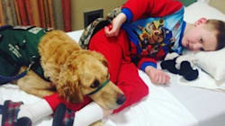 Sweet Photos Show Unbreakable Bond Between Autism Service Dogs And Their
