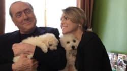 Berlusconi diventa vegetariano: