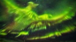 PHOTOS: Northern Lights Resemble Phoenix Rising Above