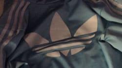 De quelle couleur est cette
