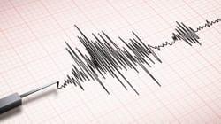 Un puissant séisme frappe le