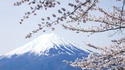 「天武天皇」ゆかりの「吉野」になぜ桜が多いのか