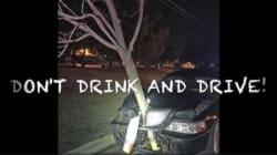 La police arrête une voiture avec... un arbre planté dans le