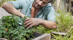 10 Gardening Tips For People Who Know Nothing About
