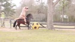 Un dinosaure sur un cheval...Oui c'est possible