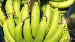 Sem desperdício: 5 receitas para aproveitar banana