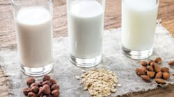 10 Substitutes That Make Dairy-Free Living A