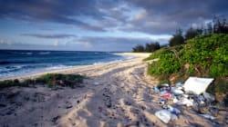 When It Comes To Beach Rubbish, Take Three For The