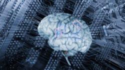 L'intelligence artificielle pourrait-elle s'affranchir du racisme et du