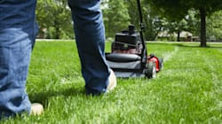 Why I Really Really Really Love Mowing The Lawn. Yeah, You Read That