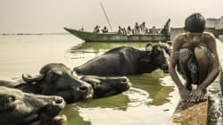 Muslim Cattle Traders Beaten To Death In Ranchi, Bodies Found Hanging From A