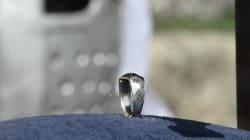 L'anneau de Jeanne d'Arc présenté au Puy du