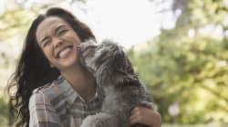 14 choses à considérer avant d'adopter un