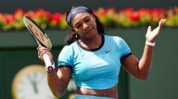 Le directeur d'Indian Wells démissionne après ses propos sexistes à l'encontre des joueuses de