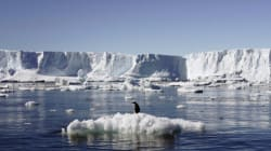 A Melting Antarctica Could Sink The World's Coastlines Faster Than