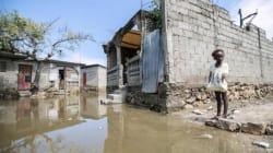 Il popolo di Haiti contro l'Onu: chi deve pagare per l'epidemia di colera che ha piegato il