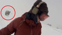 Il video dell'orso che insegue la snowboarder è un