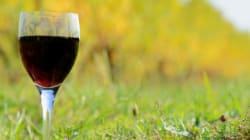 Les vins de Bordeaux prêts à sortir des