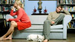 Gli alimenti al cane nelle cause di divorzio: non vi scandalizzate, è