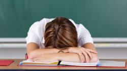 Pourquoi cet enseignant a bien fait de venir en cours