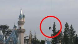 Dumbo en vrai, Disneyland l'a