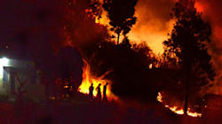 Satellite Images Show 70% Of Uttarakhand's Forest Fires Have Already Gone