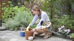 Plan Your Spring Garden