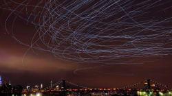 New York a trouvé une utilité artistique aux pigeons