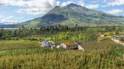 Viaggio nell'Ecuador post terremoto tra i contadini che cercano di