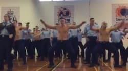 La police néo-zélandaise n'a rien à envier aux All Blacks pour le