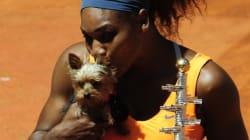 Serena Williams mange de la nourriture pour