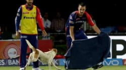 When Delhi Daredevils Chris Morris And Nathan Coulter-Nile Had To Chase A