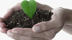 フロンに関する附帯決議が環境委員会で採択