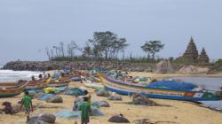 Tamil Nadu Fishermen Released By Sri Lanka
