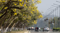 The Secret To A 'Smart City': Lessons From Chandigarh And
